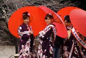 hoogtepunten japan reis tokyo iki Travels