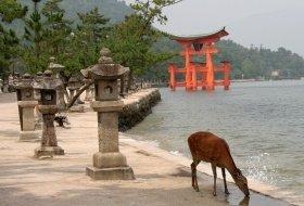 kleurrijk japan reis Miyajima iki Travels