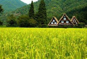 Compleet Japan reis shirakawago iki Travels
