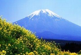Veelzijdig Japan reis mount Fuji iki Travels