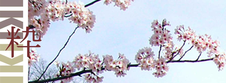 Praktische informatie over Japan iki Travels