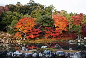 herfst reis Japan herfstkleuren iki Travels
