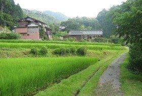 Japan wandeltocht reis iki Travels kiso vallei bouwsteen