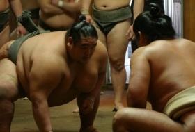 japan tokyo sumo worstelaars