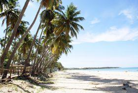Sri Lanka reis palmenstrand iki Travels
