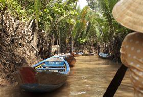 Vietnam Mekong Delta Palm moeras
