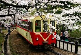 familiereis Taiwan Reis Alishan Train