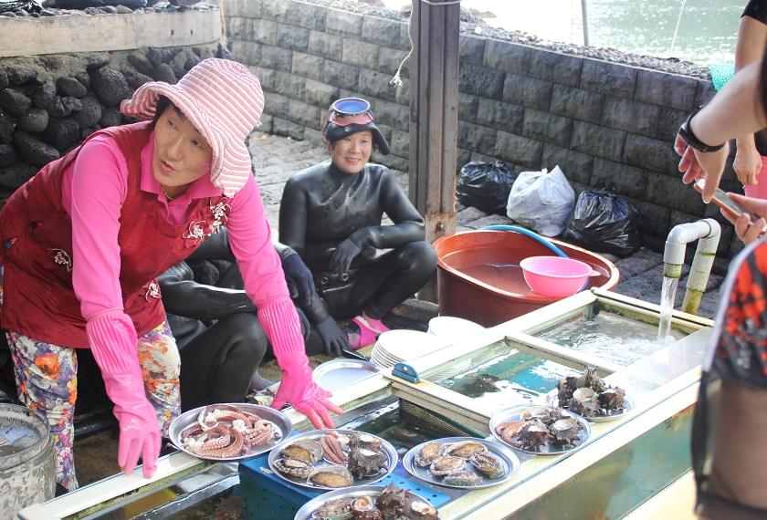 Jeju Duikers Iki Travels