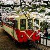 Taiwan Reis Alishan Train