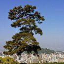 Shikoku pelgrimstocht Japan