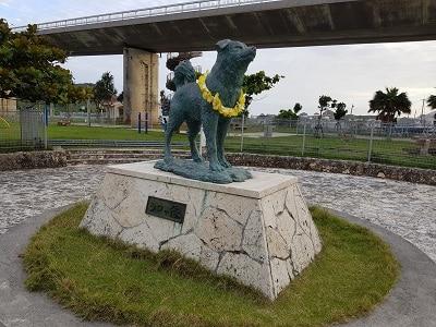 Okinawa Aka Hondje