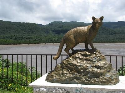 Okinawa Iriomote Kat Standbeeld