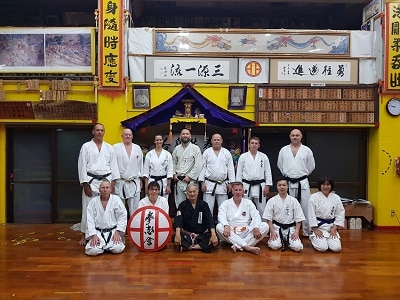 Okinawa Karate Museum Goju Ryu V2