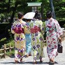 Kanazawa 15 Daagse Reis Per Auto