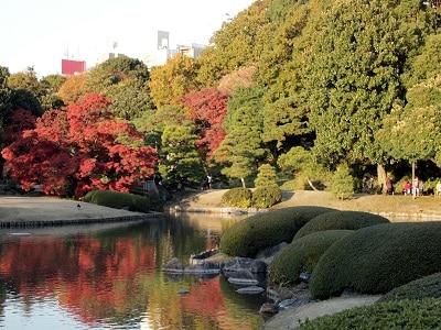 Japan Tokyo Rikugi En (7)