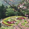 Yangmingshan Taiwan Icoon Jpg