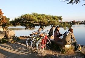 Arashiyama Kyoto Fietstocht Excursie