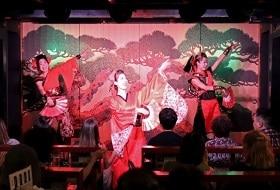Tokyo Avondcruise Dinershow