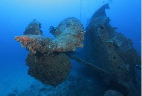 USS Emmons Duikexcrusie