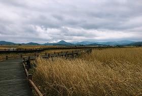 Zuid Korea, Suncheon Ecological Park 5