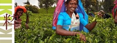 Sri Lanka Homepage Foto